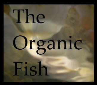 organic-fish-ad-for-gfe.jpg